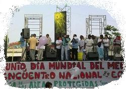 concierto pro-defensa AAPP/ concert for defense of PAs